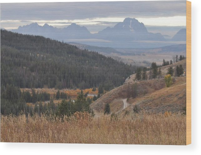 Tetons Wood Print featuring the photograph Over Looking Grand Tetons by Teresa Howell