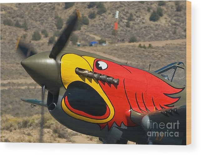 P40 Wood Print featuring the photograph P40- Nose Art by Steve Rowland
