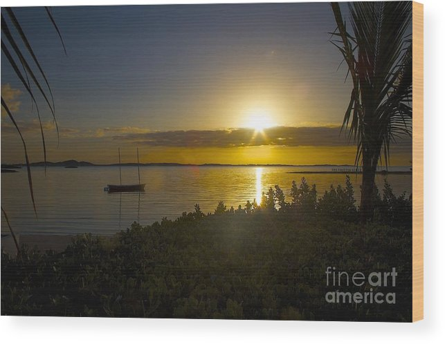 Palm Bay Beach Club Wood Print featuring the photograph Palm Bay Beach Club Exuma Bahamas by Cheryl Hurtak