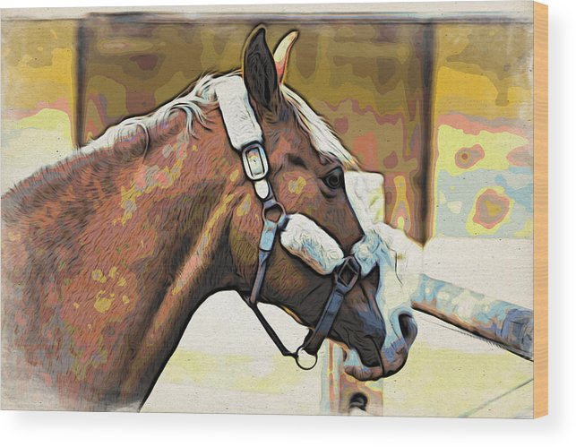 Horse Wood Print featuring the photograph Palomino by Alice Gipson