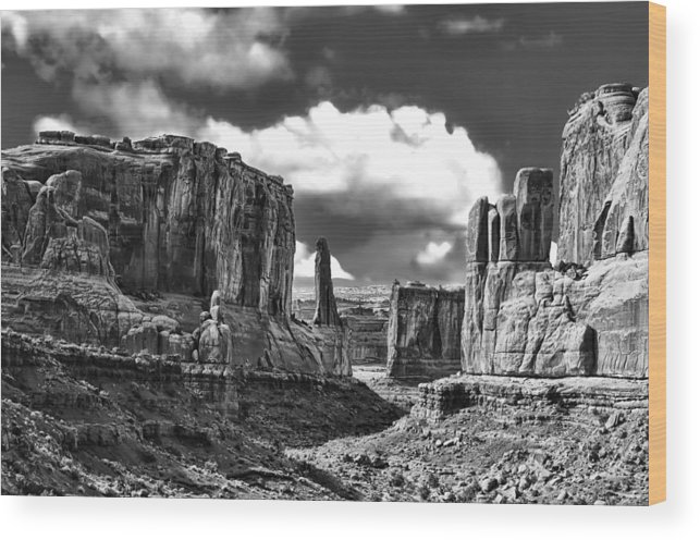 Utah Wood Print featuring the photograph Park Avenue In Arches National Park by Betty Eich