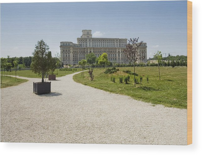 Park Wood Print featuring the photograph Parliament At Summer Bucharest by Ioan Panaite