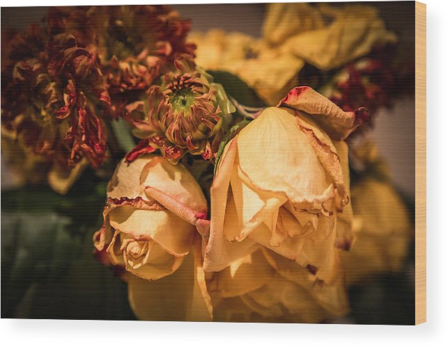 Flowers Wood Print featuring the photograph Past Our Prime by Tony Noto