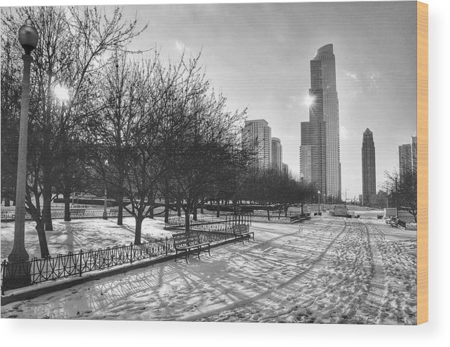 Chicago Wood Print featuring the photograph Peaceful Side Of Chicago by Nikki Watson  McInnes