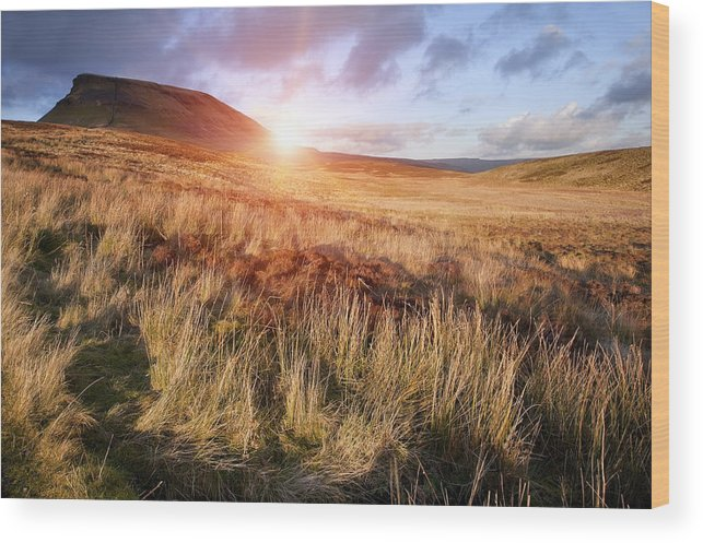 Landscape Wood Print featuring the photograph Pen-y-ghent by Matthew Gibson