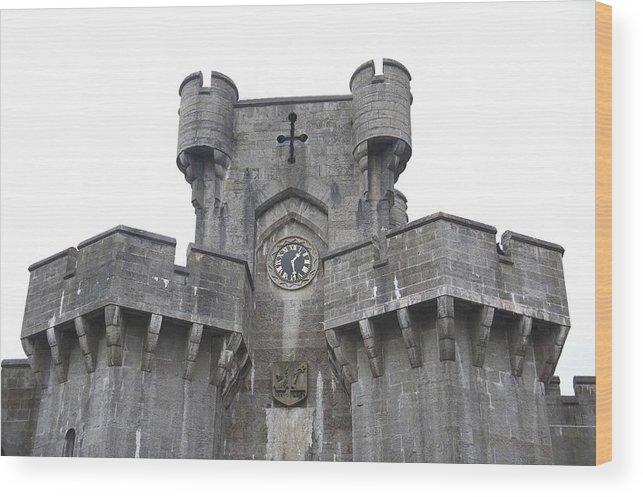 Castles Wood Print featuring the photograph Penrhyn Castle 2 by Christopher Rowlands