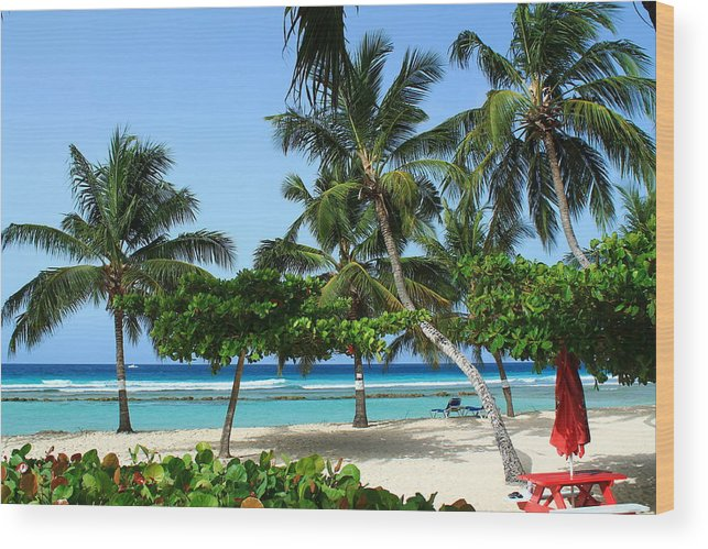 Barbados Wood Print featuring the photograph Picnic Here by Catie Canetti