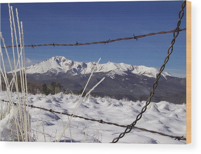 Colorado Winter Wood Print featuring the photograph Pikes Peak Through The Fence by Carol Milisen