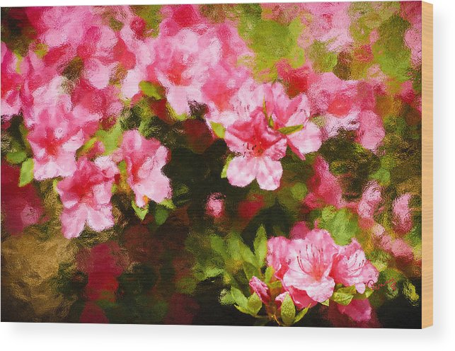 :penny Lisowski Wood Print featuring the photograph Pink Azealas by Penny Lisowski