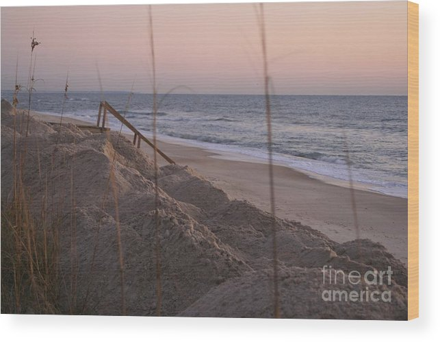 Pink Wood Print featuring the photograph Pink Sunrise On The Beach by Nadine Rippelmeyer