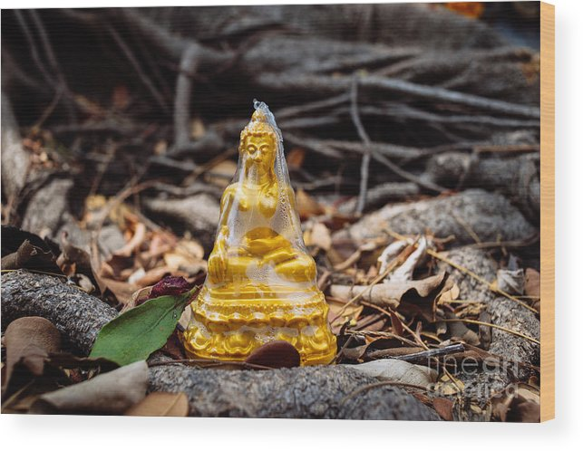Buddha Wood Print featuring the photograph Plastic Enlightenment by Dean Harte