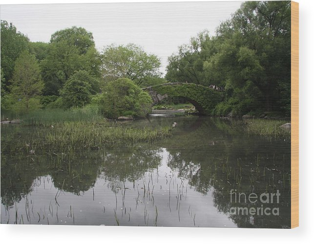 Pond Wood Print featuring the photograph Pond And Bridge by Christiane Schulze Art And Photography