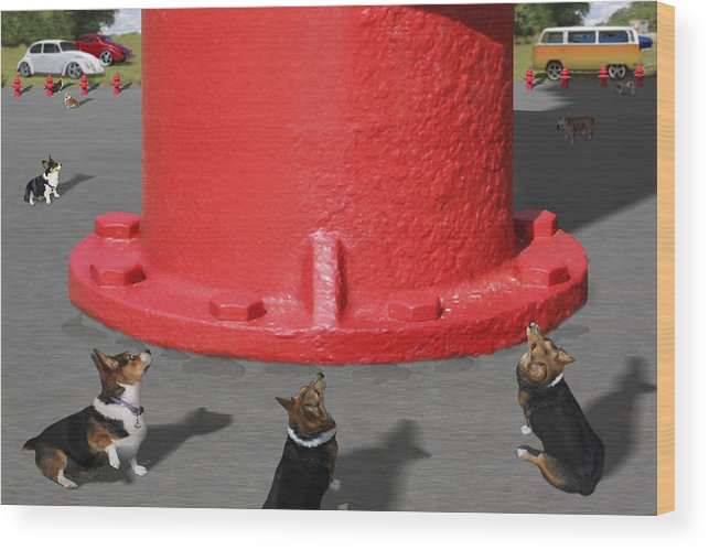 Corgis Wood Print featuring the photograph Postcards From Otis - The Hydrant by Mike McGlothlen