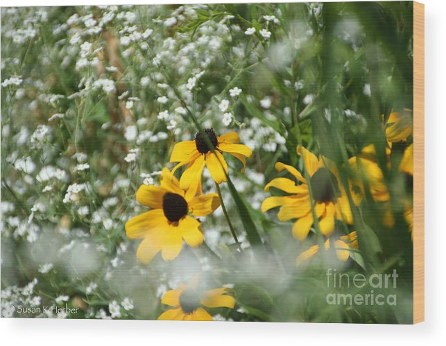 Flower Wood Print featuring the photograph Prairie Colors by Susan Herber