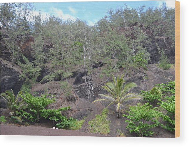 Maui Wood Print featuring the photograph Prehistoric Presence by Evan Silver