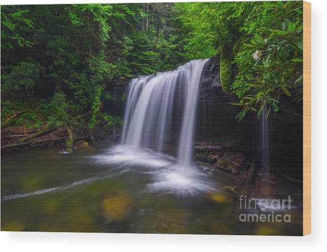 Martins Fork Creek Wood Print featuring the photograph Quadrule Falls Summer by Anthony Heflin