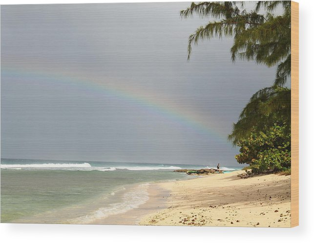 Rainbow Wood Print featuring the photograph Rainbow Bright by Catie Canetti