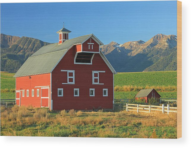 Fall Colors Wood Print featuring the photograph Dn5939-red Barn In The Wallowas by Ed Cooper Photography