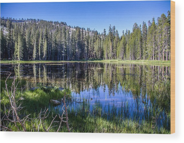Yosemite Wood Print featuring the photograph Reflections At Its Best by Brian Williamson