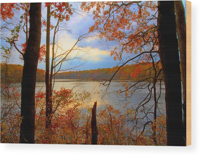 Autumn Wood Print featuring the photograph Reflections Of Autum by J Charles