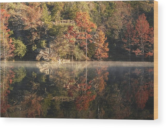 Fall Wood Print featuring the photograph Reflections Of Fall by Cindy Rubin
