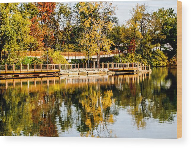 Landscape Wood Print featuring the photograph Reflections Of Fall by Courtney Pettay