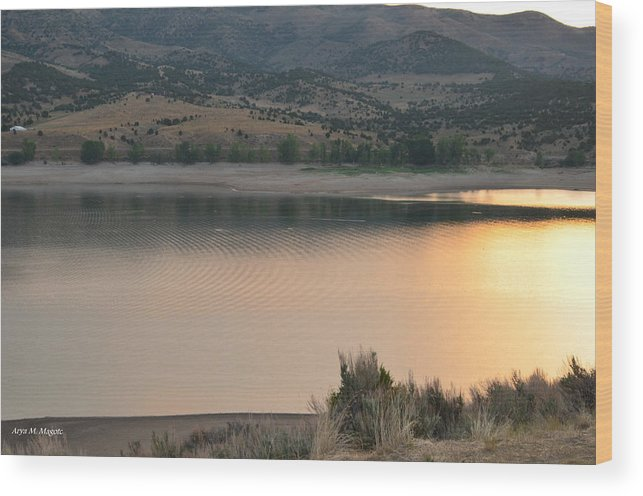 Sunset Wood Print featuring the photograph Ripples In A Pond by Arya Acier