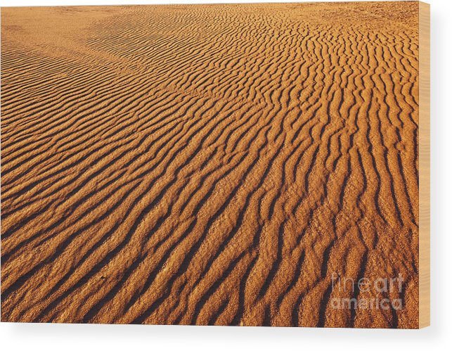 Deserts Wood Print featuring the photograph Ripple Patterns In The Sand 1 by James Brunker