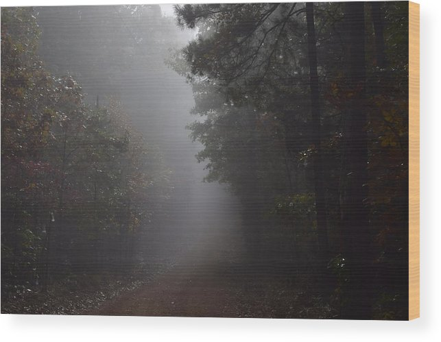 Autumn Wood Print featuring the photograph Roads 23 by Lawrence Hess