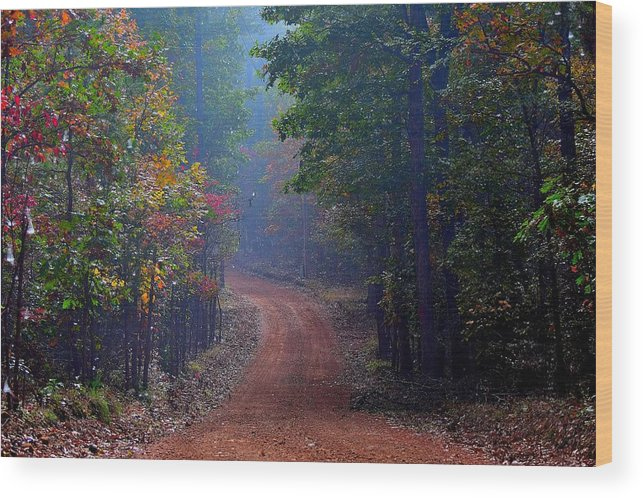 Fall Wood Print featuring the photograph Roads 38b by Lawrence Hess