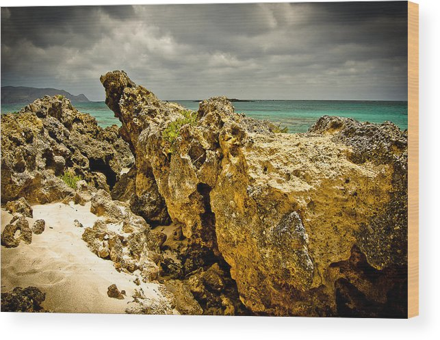 Greece Wood Print featuring the photograph Rocks Of Elafonisi Island by Oleg Koryagin