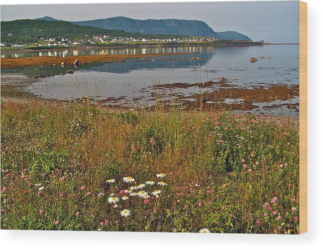 Rocky Harbour In Gros Morne Np Wood Print featuring the photograph Rocky Harbour-nl by Ruth Hager