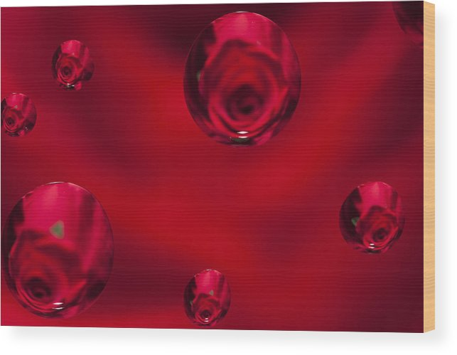 Flower Wood Print featuring the photograph Rose Syrup Abstract 1 B by John Brueske