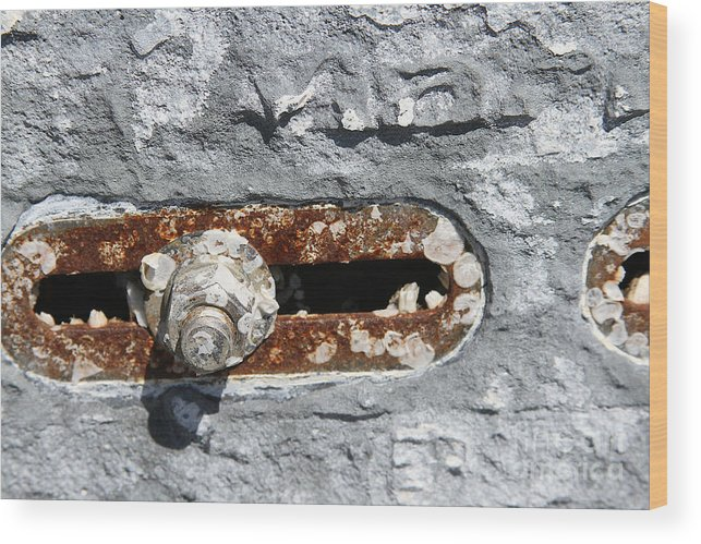 Wood Print featuring the photograph Rusted Slot by Heidi Piccerelli