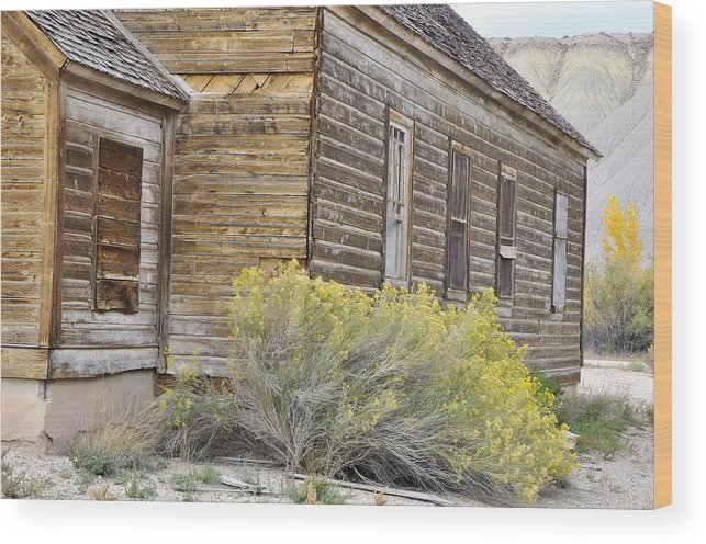 Canvas Prints Wood Print featuring the photograph Rustic Building by Wendy Elliott