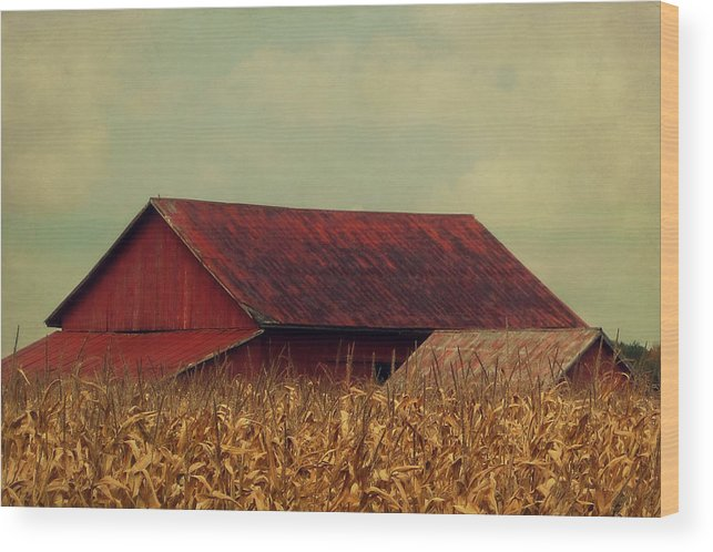 Barn Wood Print featuring the photograph Rustic Red Barn by Angie Turner