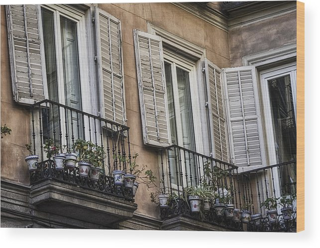 Aged Wood Print featuring the photograph Sad Windows by Joan Carroll