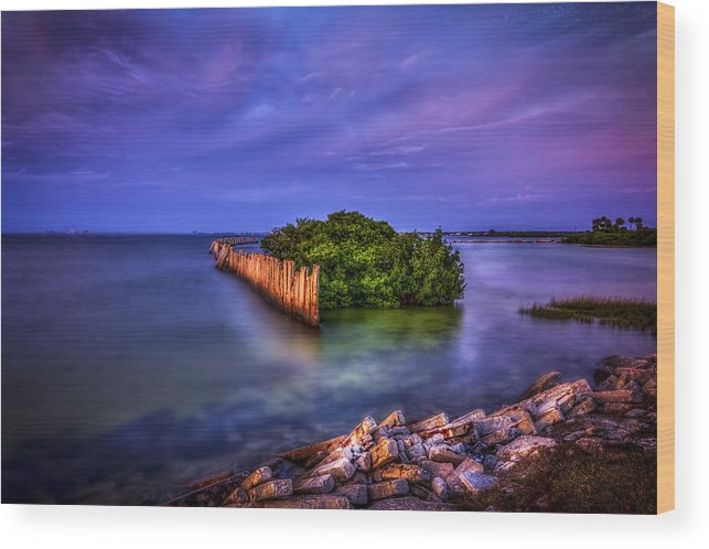 Oceanside Wood Print featuring the photograph Safe Haven by Marvin Spates