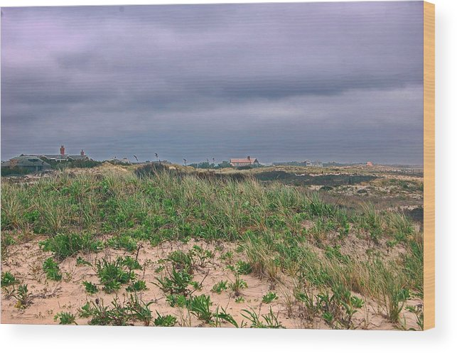 Dunes Wood Print featuring the photograph Sailors Haven Fire Island Ny by Tony Ambrosio