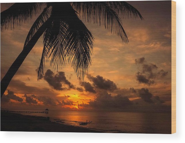 Palm Wood Print featuring the photograph Salida Del Sol by Jim Southwell