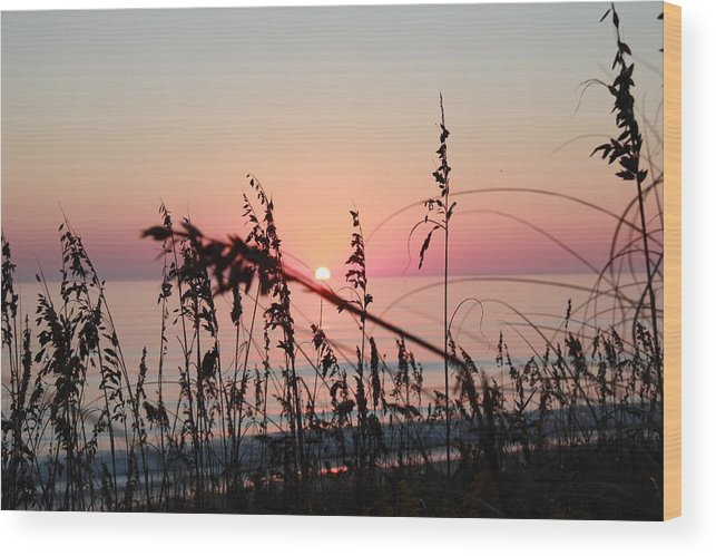 Landscape Wood Print featuring the photograph Scarlet Sunrise by Bobby Gentry