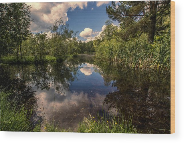 Loch Wood Print featuring the photograph Scottish Refections by Sam Smith Photography