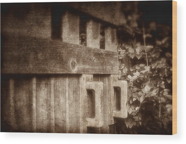 Art Wood Print featuring the photograph Secluded Garden by Tom Mc Nemar