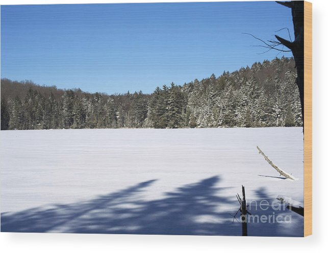 Algonquin Park Wood Print featuring the photograph Shadows On The Lake by Elaine Mikkelstrup