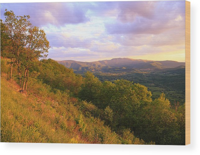 Shenandoah's Golden Hour Wood Print featuring the photograph Shenandoah's Golden Hour by Rachel Cohen
