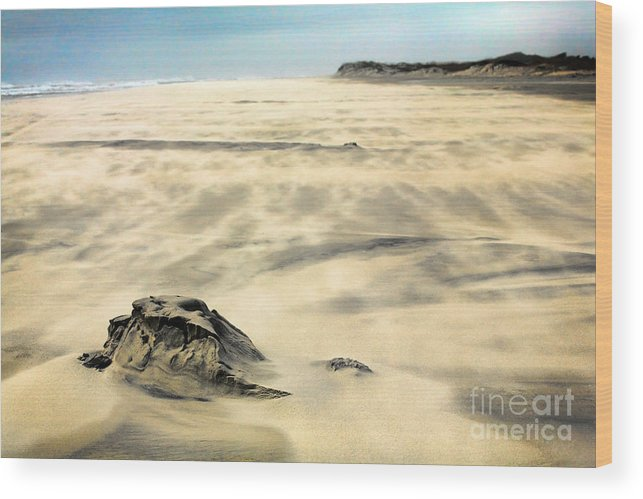 Outer Banks Wood Print featuring the painting Shifting Sands On Ocracoke Outer Banks by Dan Carmichael