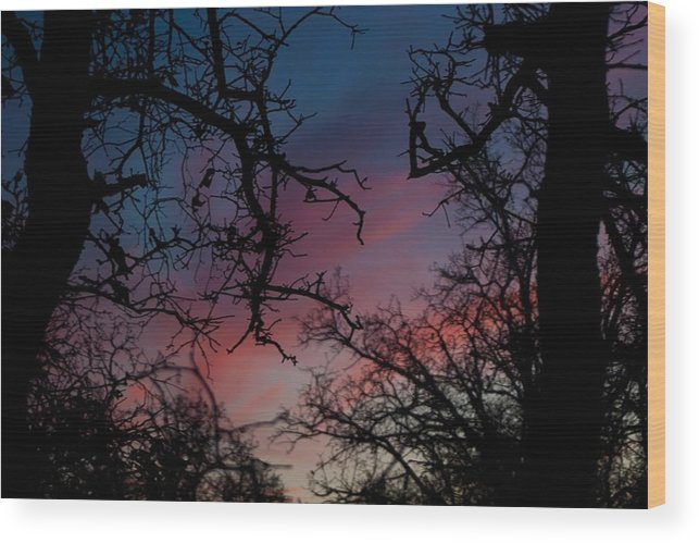 Blue Wood Print featuring the photograph Sky In Blue And Magenta by Lezlie Faunce