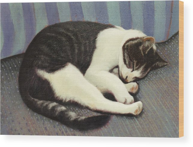 Cat Wood Print featuring the painting Sleeping Cat by Blue Sky