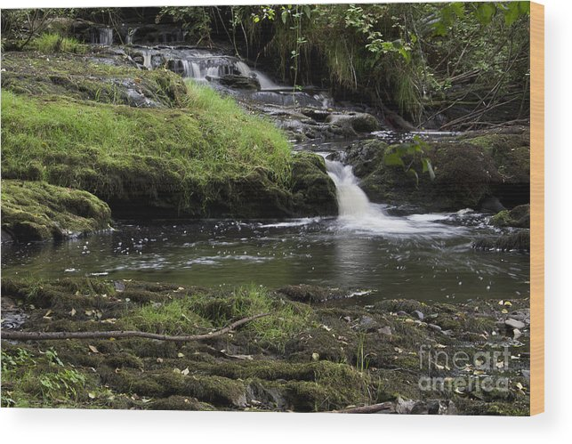 Creek Wood Print featuring the photograph Small Falls On West Beaver Creek by Kathy McClure