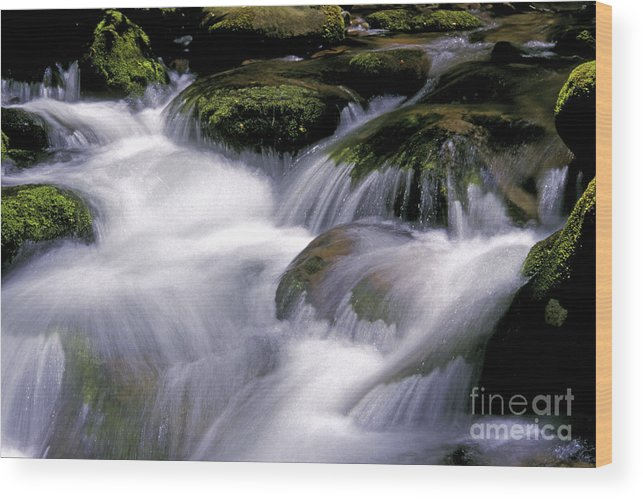 Stream Wood Print featuring the photograph Smoky Mountain Stream by Paul W Faust - Impressions of Light